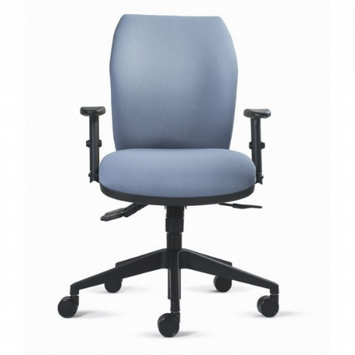 Status Zen Medium Back Orthopaedic Task Chair 23.5 stone